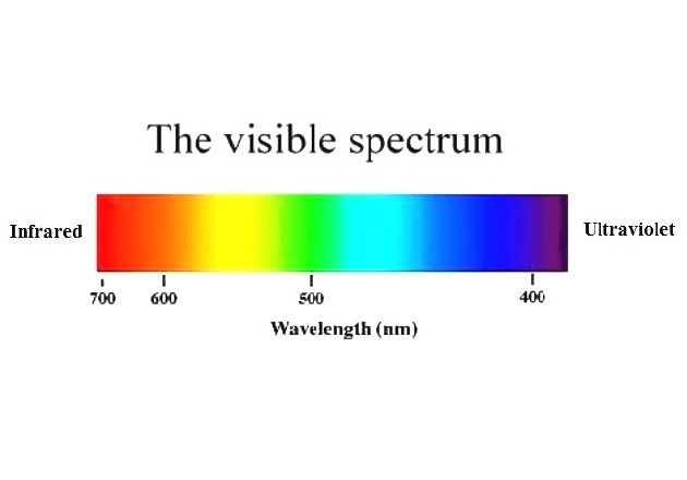 The visible spectrum is the portion of the electromagnetic spectrum visible to the human eye. Image courtesy of Michigan State University.