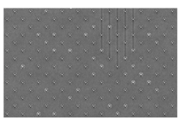 Figure 3: Variations in the brightness of the bumps indicate some disbonds in this flip chip.