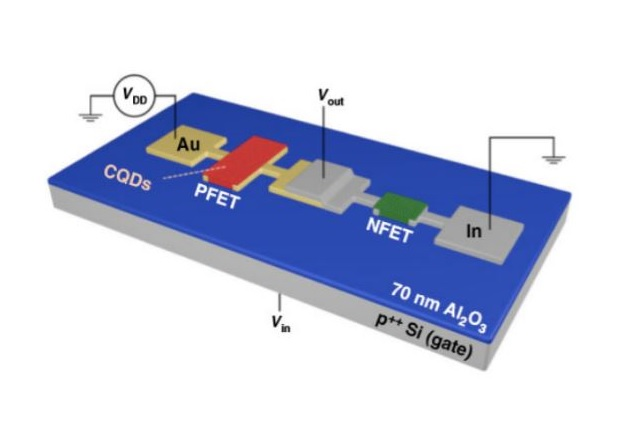 Gold and indium were used to define p- and n-type transistors. Image used courtesy of Los Alamos National Laboratory